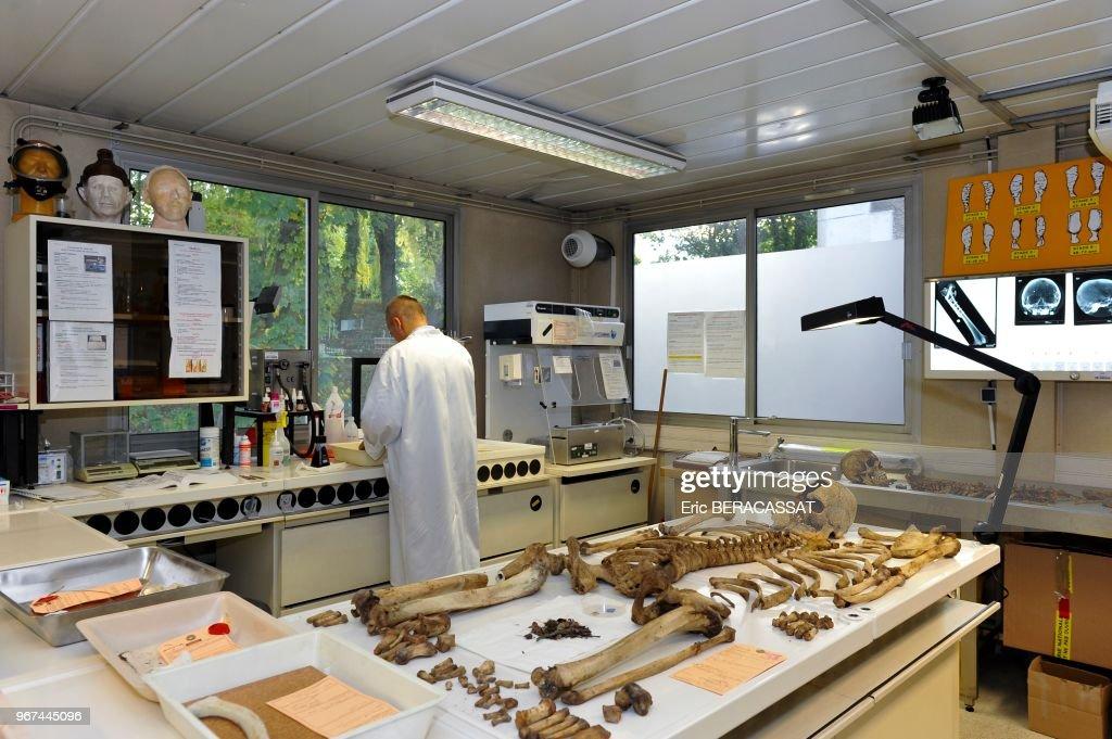 Laboratoire D Anthropologie Identification D Ossements Humains A