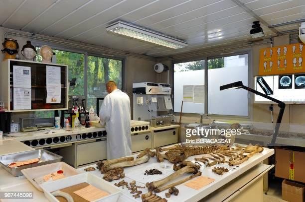 Laboratoire d'anthropologie identification d'ossements humains à l'Institut de Recherche Criminelle de la Gendarmerie Nationale RosnysousBois France