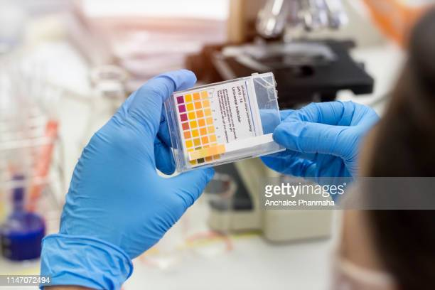 laboratory concept; scientist use colored litmus paper in hand in chemical laboratory. - alkaline stock pictures, royalty-free photos & images