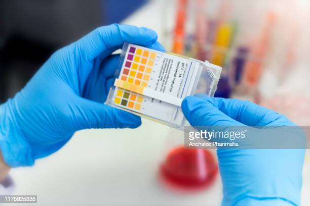 laboratory concept; scientist use colored litmus paper in hand in chemical laboratory. - ph value stock pictures, royalty-free photos & images