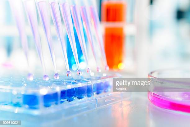 laboratory - chemistry stock pictures, royalty-free photos & images