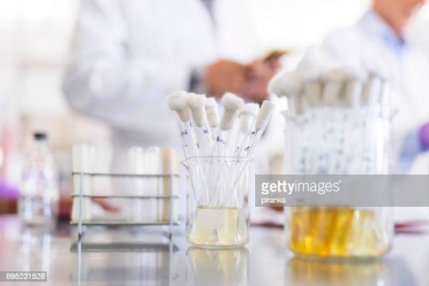 laboratory - urine stock photos and pictures