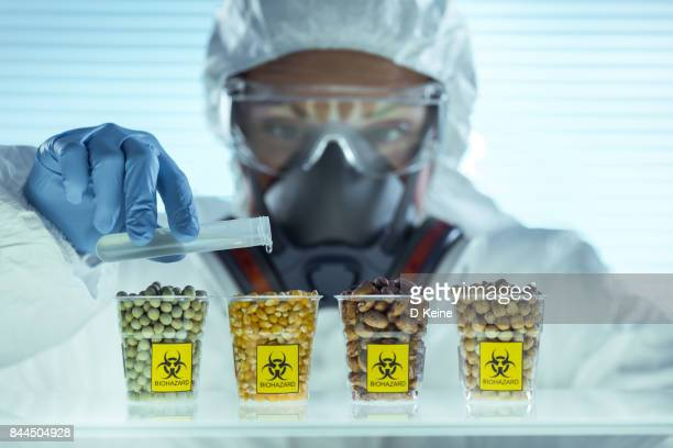 laboratory - food contamination stock photos and pictures
