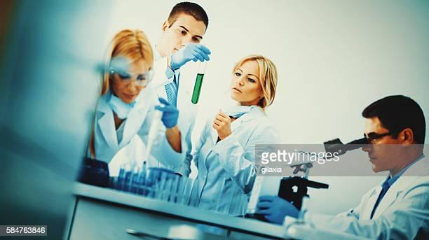 laboratory routine. - vangen bildbanksfoton och bilder