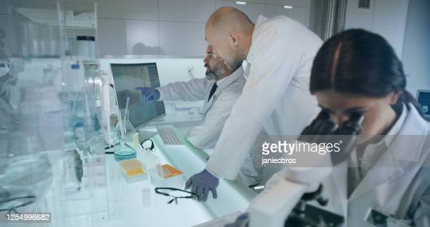 laboratory team working with medical samples. female doctor using microscope - pathogen transmission stock pictures, royalty-free photos & images