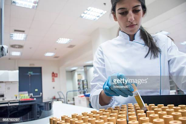 Laboratory technician in analytical laboratory with test tube tray
