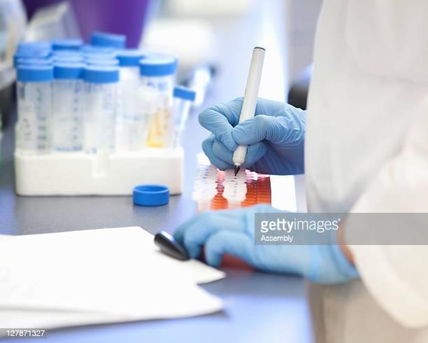 Laboratory technician marking lab samples