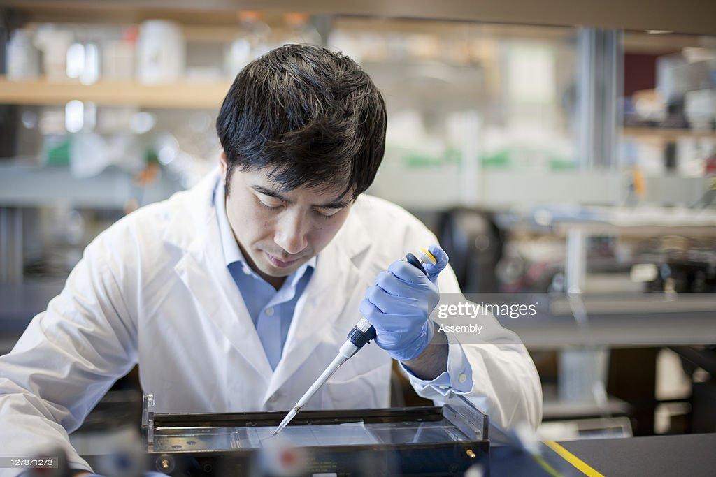 Laboratory technician uses micro-pipette : Stock Photo
