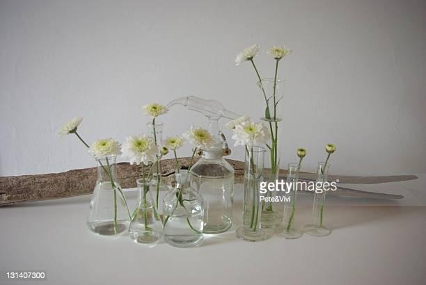 Laboratory vases