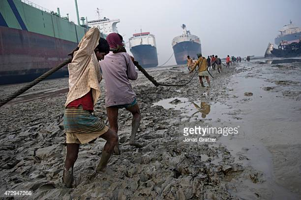 Laborers are pulling rope on the muddy beach of Chittagong where mega freighters that are out of service have been left for them to be disassembled...