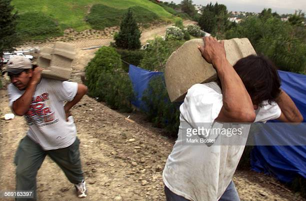 HILLS–––Laborers hauled cinder blocks for a retaining wall up a steep horse trail behind the mansion owned by Broadcom co–founder Henry T Nicholas in...