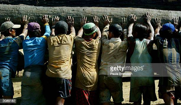 Laborers Live And Work In Myanmar Logging Camp