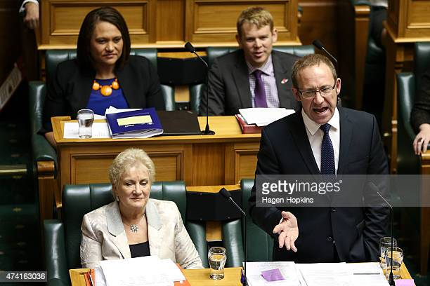Labour leader Andrew Little speaks while deputy leader Annette King looks on during the 2015 budget presentation at Parliament House on May 21 2015...