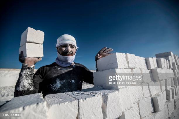 A labourer poses for a picture while working at the White Mountain limestone extraction quarry site near Egypt's southern city of Minya some 265...