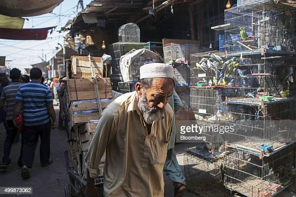 A labourer pulls a cart laden with wooden boxes through a bird market in Karachi Pakistan on Wednesday Dec 2 2015 A committee of Pakistan's top...