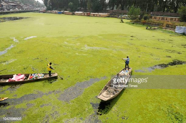 Labourers remove plastic from a weedcovered tributary of Dal Lake on September 28 2018 of Srinagar India