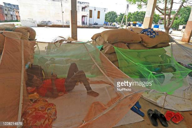 Labourers take rest at Kukar Kheda Grain Market following the announcement of 4 days strike by Rajasthan Khadya Padarth Vypar Sangh against the...