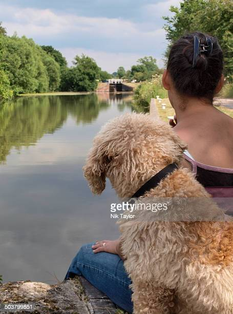 labradoodle dog and owner sat beside a canal - labradoodle stock-fotos und bilder