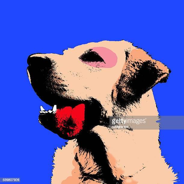 Labrador retriever digital vector