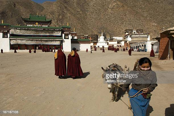 Labrang Monastery during Tibetan New Year celebrations Gansu Province China Labrang Monastery is one of six monasteries of the Geluk school of...