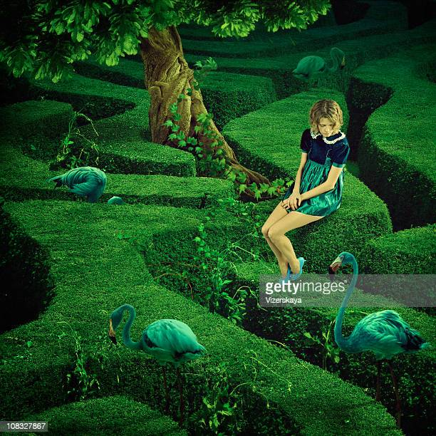 labyrinth. green birds. - maze stock photos and pictures