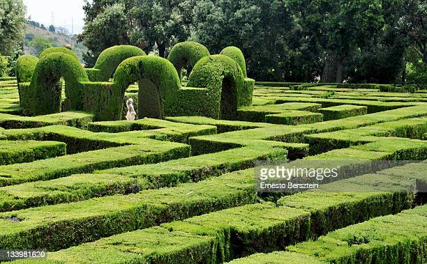 Labyrinth in green
