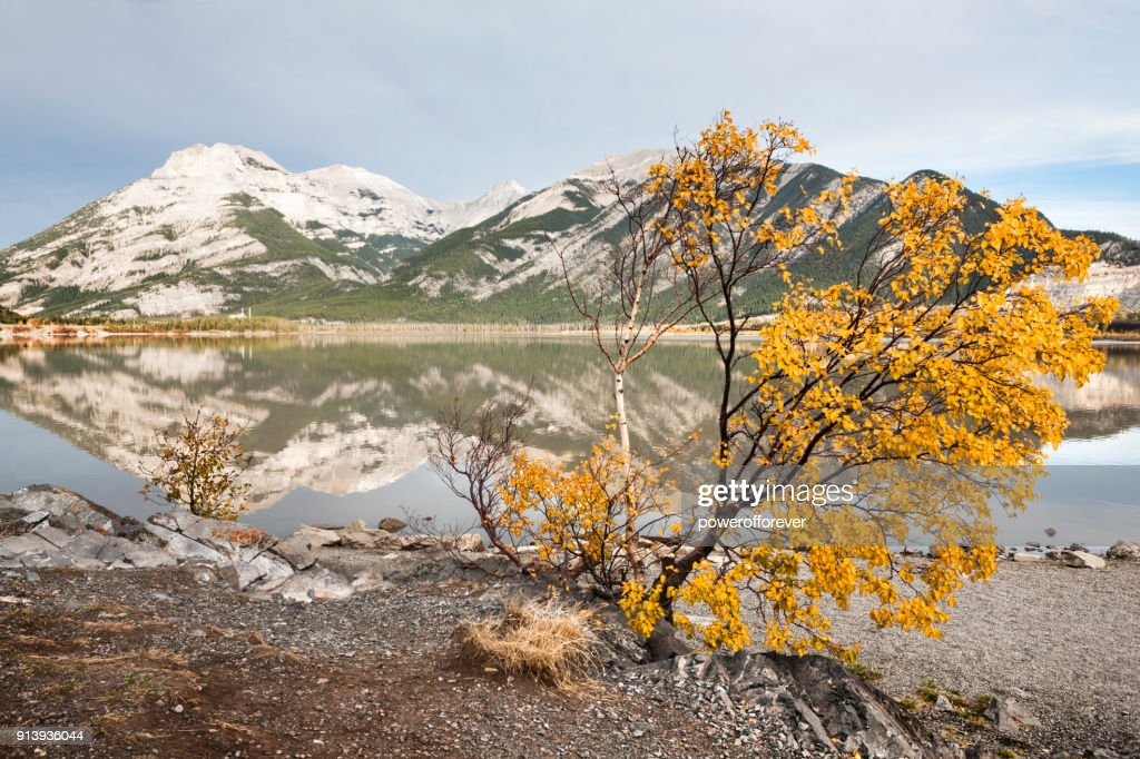 Lac des Arcs in the Canadian Rocky Mountains, Alberta, Canada : Stock Photo