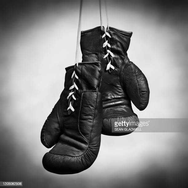 laced boxing gloves - lace glove stock pictures, royalty-free photos & images