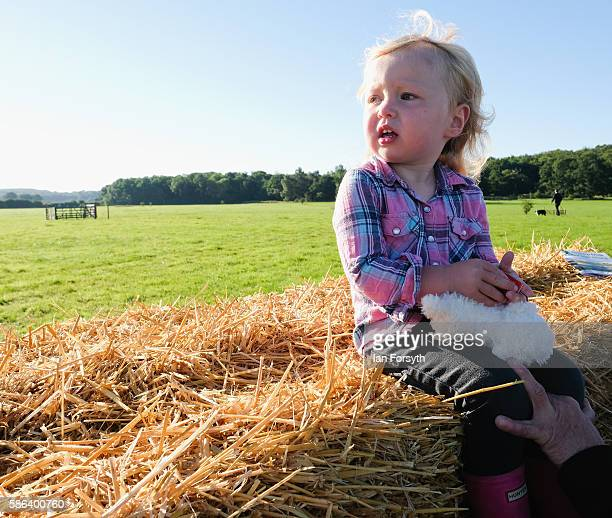 Lacey Harrison from Kendal sits on hay bales as she watches the British National Sheep Dog Trials on August 6, 2016 in York, England. Some 150 of the...