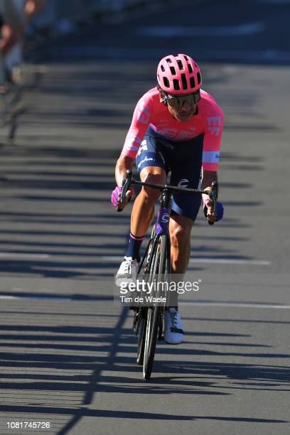 Lachlan Morton of Australia and Team EF Education First Pro Cycling / during the 2019 Tour Down Under Classic a 1 hour 1 lap of 17km race from...
