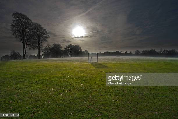 lacrosse field - lacrosse stock pictures, royalty-free photos & images