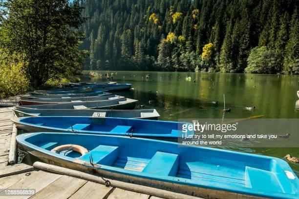 lacul rosu, harghita - romania, europe - moldavia fotografías e imágenes de stock