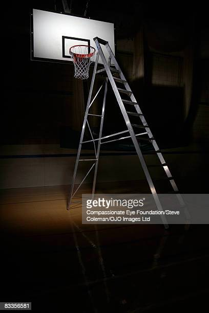 Ladder leading to the basket