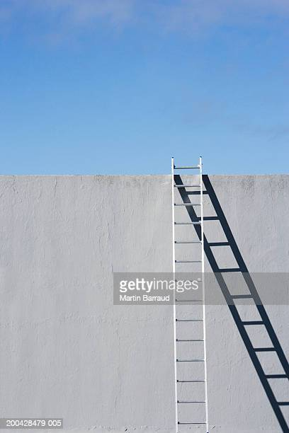 Ladder leaning against concrete wall, high section