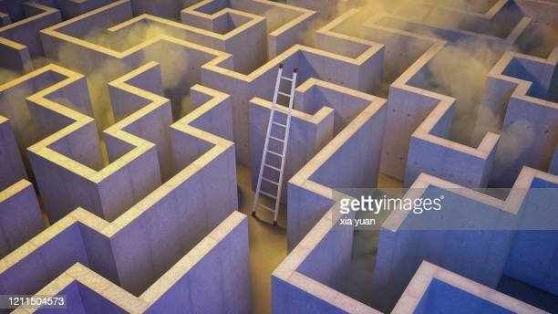 ladder leaning against wall in giant maze - rules stock pictures, royalty-free photos & images