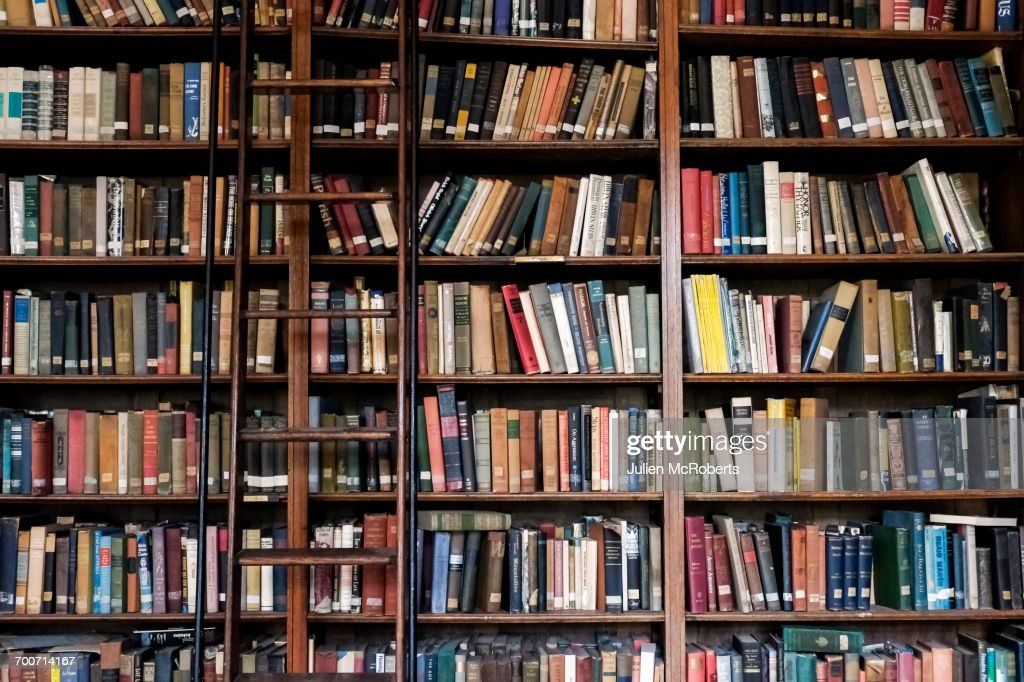 Ladder on library bookcase : Stock Photo