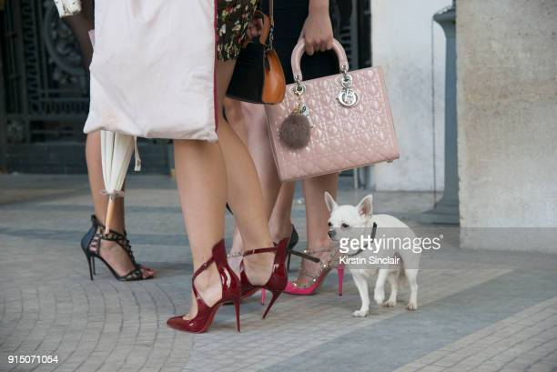 Ladies in high heeled shoes, a Dior handbag with a small Chihuahua dog day 5 of Paris Womens Fashion Week Spring/Summer 2018, on September 30, 2017...
