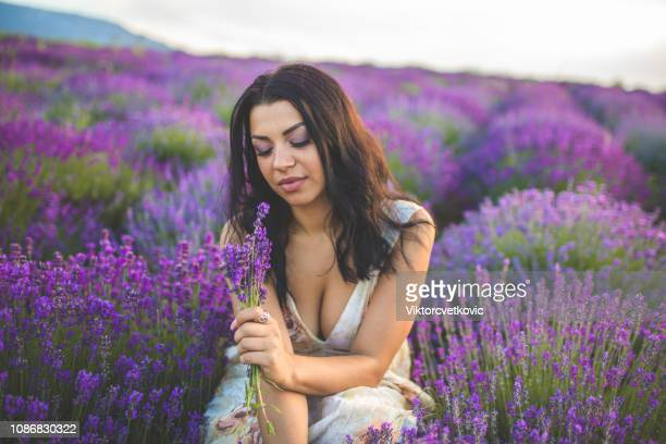 ladies in lavender - purple dress stock pictures, royalty-free photos & images