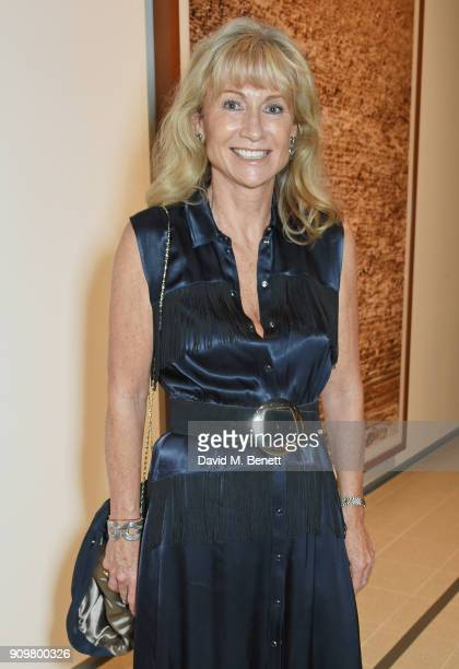 Lady Alison Myners attends the reopening of The Hayward Gallery featuring the first major UK retrospective of the work of German photographer Andreas...