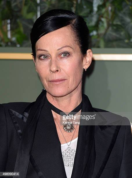 Lady Amanda Harlech attends the Evening Standard Theatre Awards at The Old Vic Theatre on November 22 2015 in London England