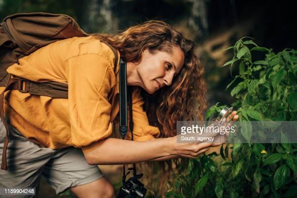 biologa donna che usa lente d'ingrandimento in natura - biologo foto e immagini stock