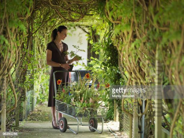 Lady Buying Plants At Garden Center