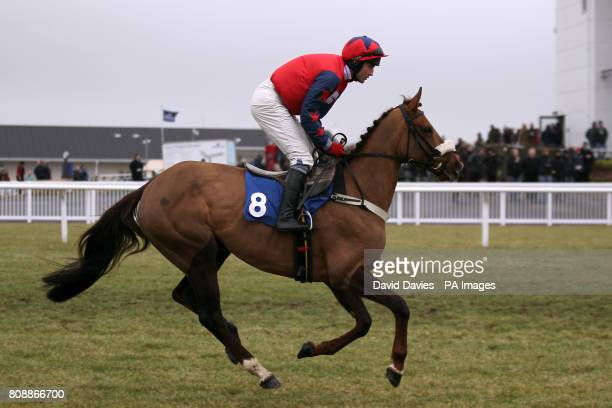 Lady From Ige ridden by jockey Rodi Greene goes to post before the williamhillcom Novices' Hurdle
