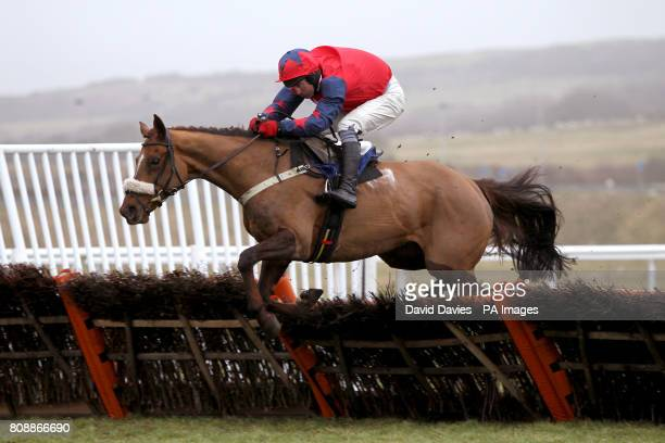 Lady From Ige ridden by jockey Rodi Greene jumps a fence in the williamhillcom Novices' Hurdle