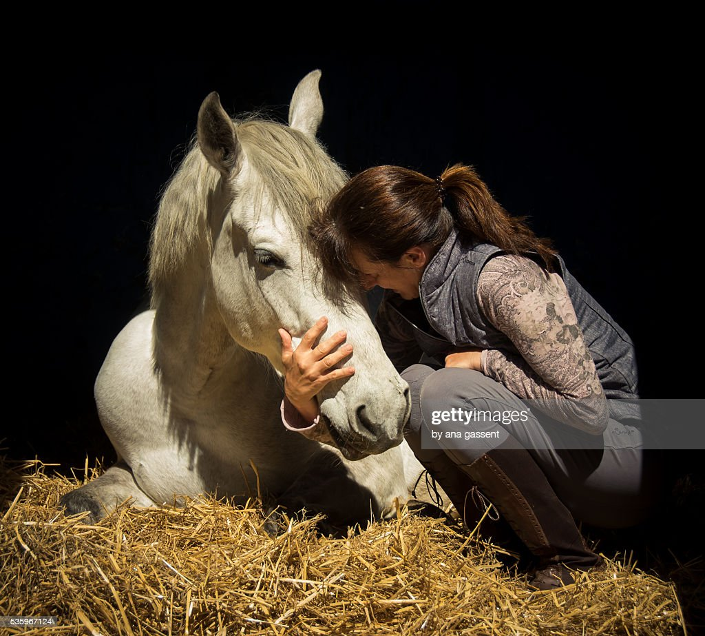 Lady kissing her horse : Stock Photo