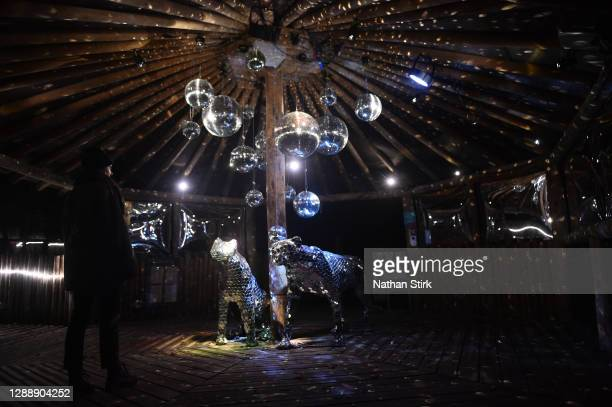 Lady looks on during the rehearsals of Chester Zoo light trail festival called 'The Lanterns' at Chester Zoo on December 01, 2020 in Chester, England.