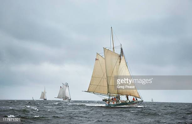 """lady maryland leading the race on chesapeake bay - """"greg pease"""" stock pictures, royalty-free photos & images"""
