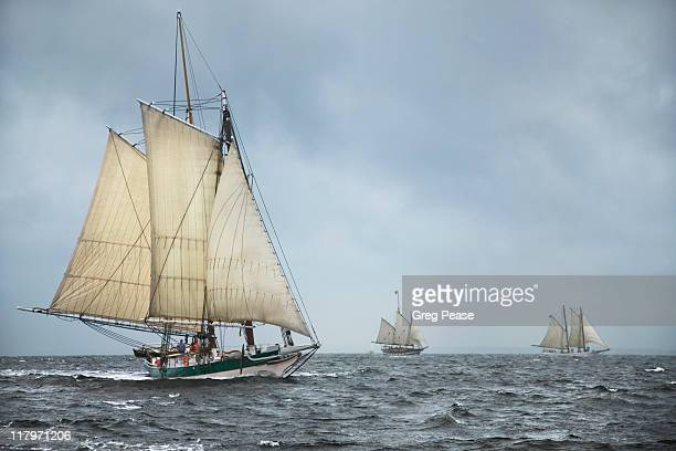 """lady maryland racing on the chesapeake bay - """"greg pease"""" stock pictures, royalty-free photos & images"""