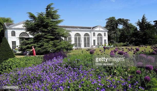 Lady pushes a pram through Royal Botanic Gardens, Kew on the day it re-opened to the public after lockdown on June 01, 2020 in London, England . The...