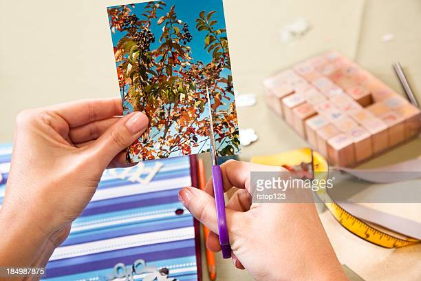 Lady scrapbooking, cutting a photograph.